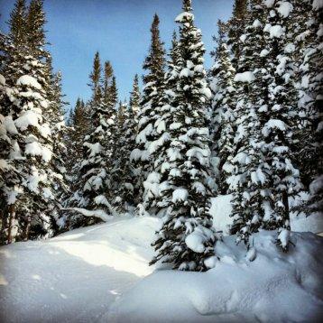 Sunshine Village, Banff National Park