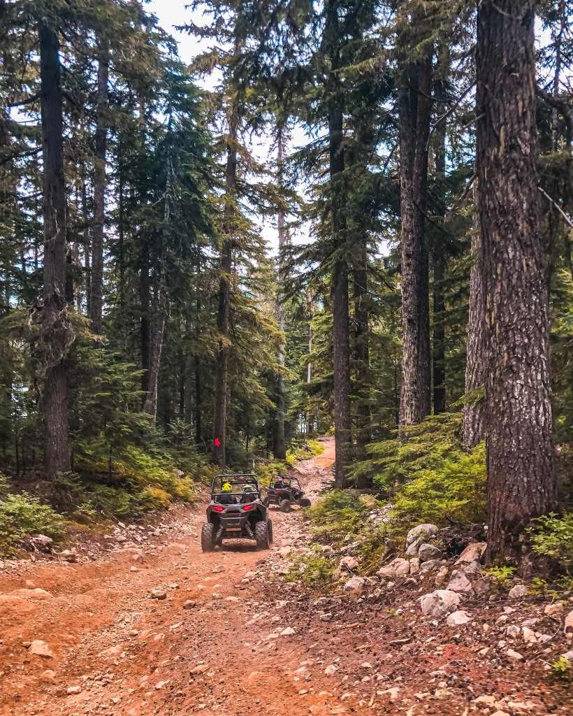 RZR The Adventure Group Whistler