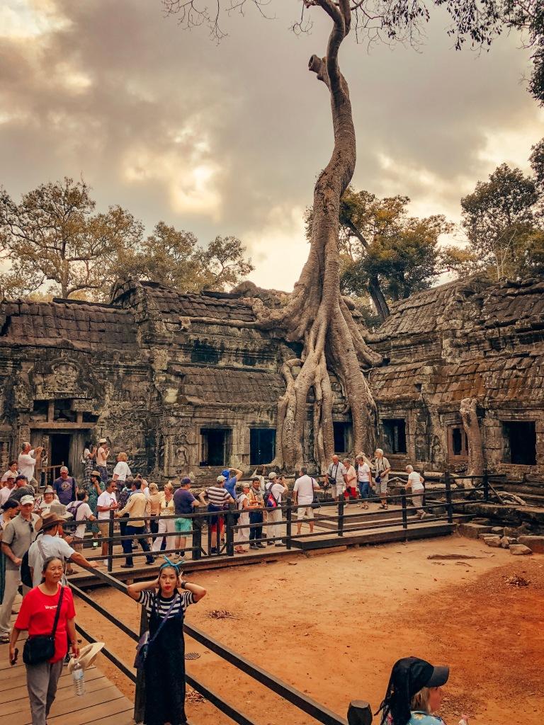 Ta Phrom Temple, Siem Reap, Cambodia